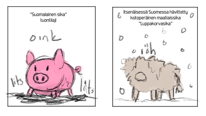 suomalainensika