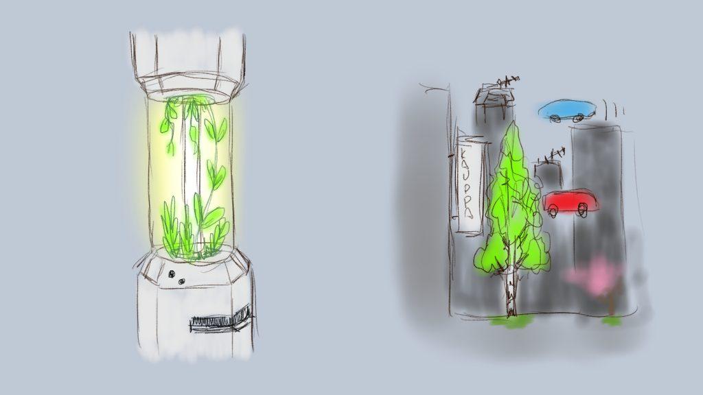 lampu kasvo
